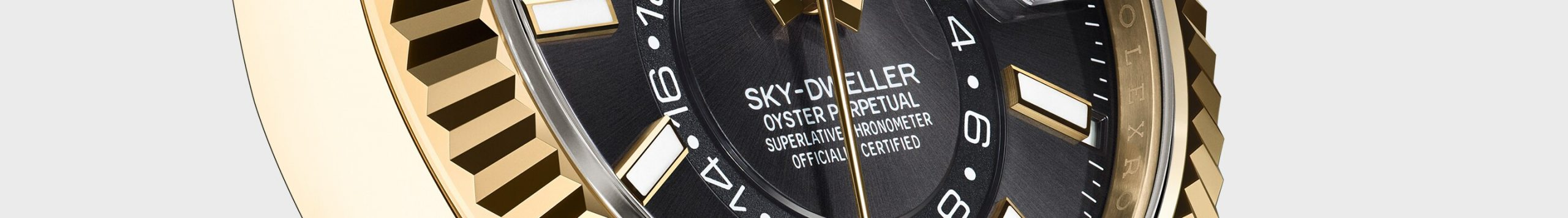 Guides de l'utilisateur Rolex Sky Dweller